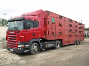 Негабарит и другие виды грузов